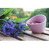 Magisso - kubki do zaparzania herbaty