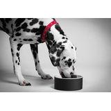 Magisso - ceramika chłodząca - miska dla psa
