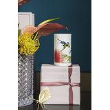 Villeroy & Boch - Amazonia Gifts - lampion na tealight