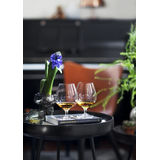 Holmegaard - Cabernet - 6 kieliszków do brandy