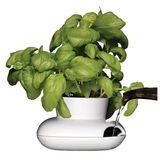 Sagaform - Kitchen - wazon na zioła - wymiary: 13 x 13 cm