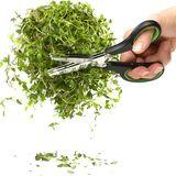 Sagaform - Kitchen - potrójne nożyce do ziół