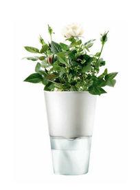 Eva Solo - akcesoria do kwiatów