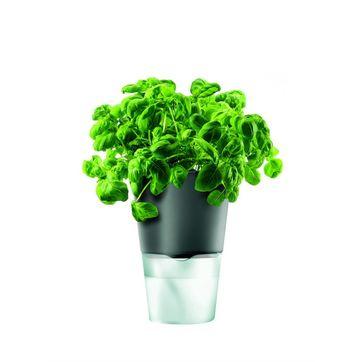 Eva Solo - porcelanowe samopodlewające doniczki na zioła