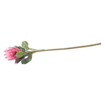 Villeroy & Boch - Breakfast - sztuczny kwiat - protea królewska - długość: 72 cm