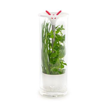 Véritable - pojemnik na świeże zioła - wysokość: 25,5 cm
